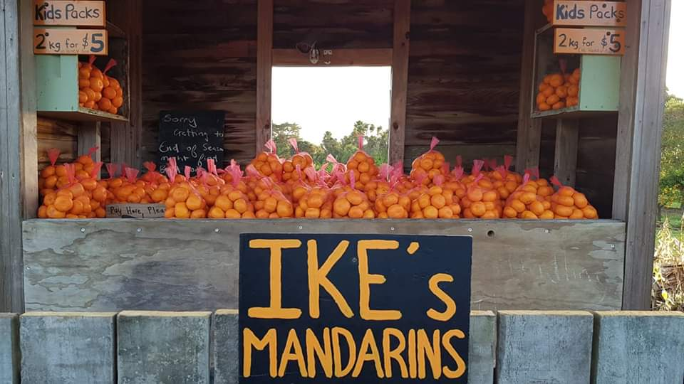 Ikes Mandarins