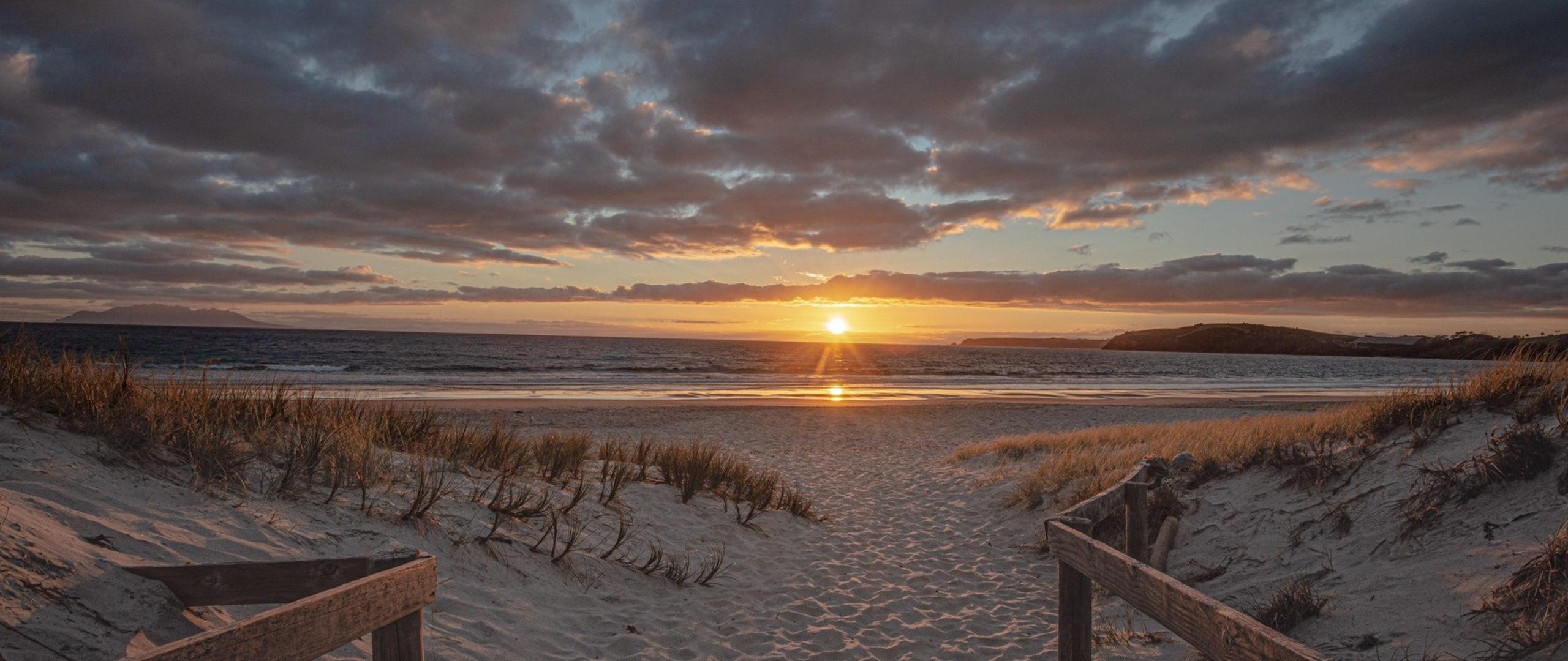 Omaha Beach Matakana Coast