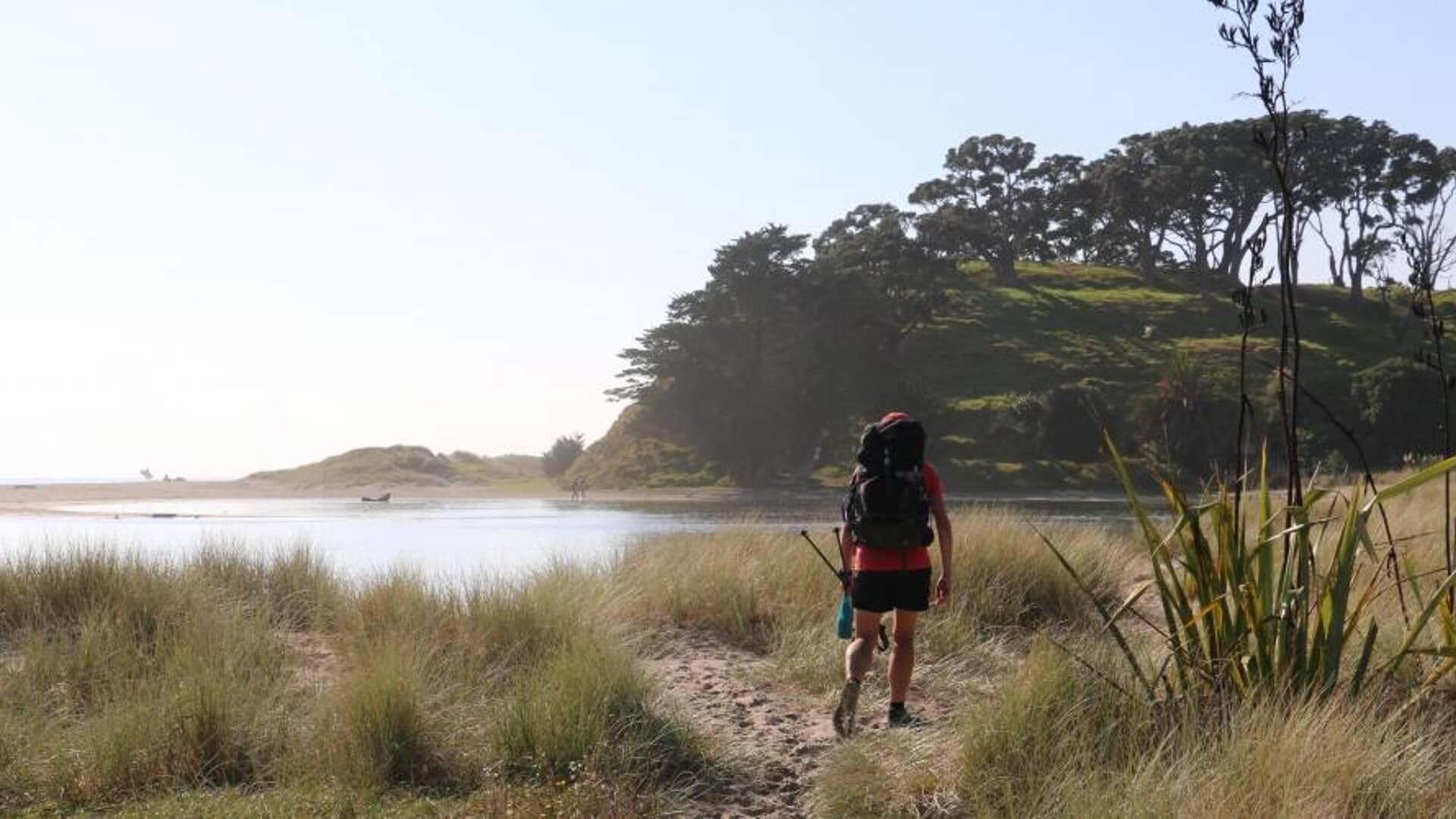Pakiri Beach Family Walks including people with Tiny Legs